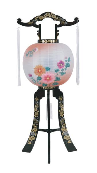 京提灯山月 2号菊ボカシ(1台)の写真