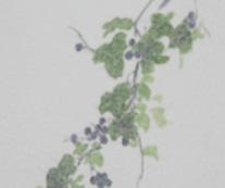 京行灯 月花 野葡萄(1台)の写真