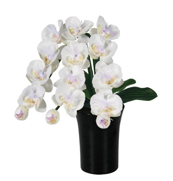 LEDで光る造花 ルミナス胡蝶蘭(1台)の写真