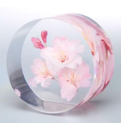 季節の花でつくる生花標本オブジェ【まもり花】[丸形]の写真