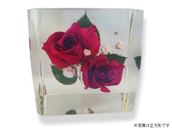 季節の花でつくる生花標本オブジェ【まもり花】[長方形2]の写真