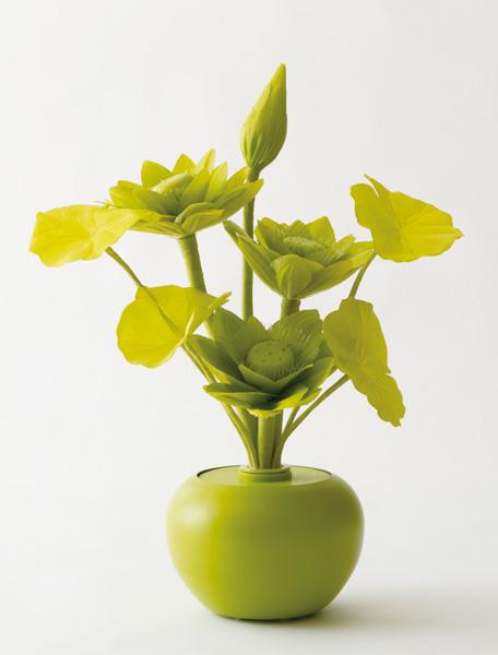 botanica 蓮 Gの写真