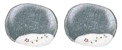 供物台 信楽焼反供物台[青華彩色]1対の写真
