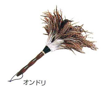 毛材【オンドリ】の写真