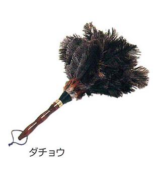 毛材【ダチョウ】の写真